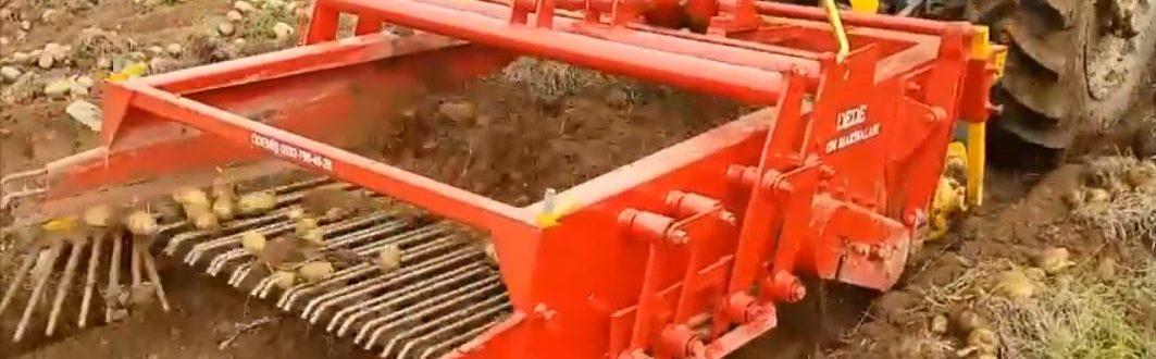 patates-sökme-makinası